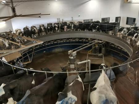 Dairy-go-round